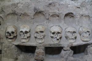 Tour crânes